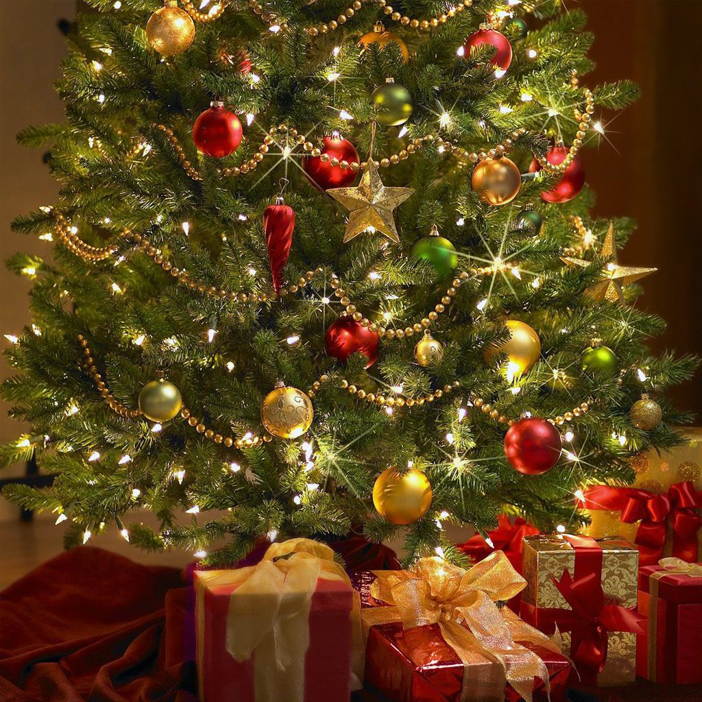 Christmas Tree Decorating Ideas | Trees Home Made Christmas Tree ...