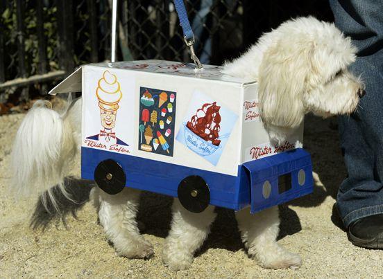 10 Clever Halloween Dog Costumes Dog Halloween Dog Halloween