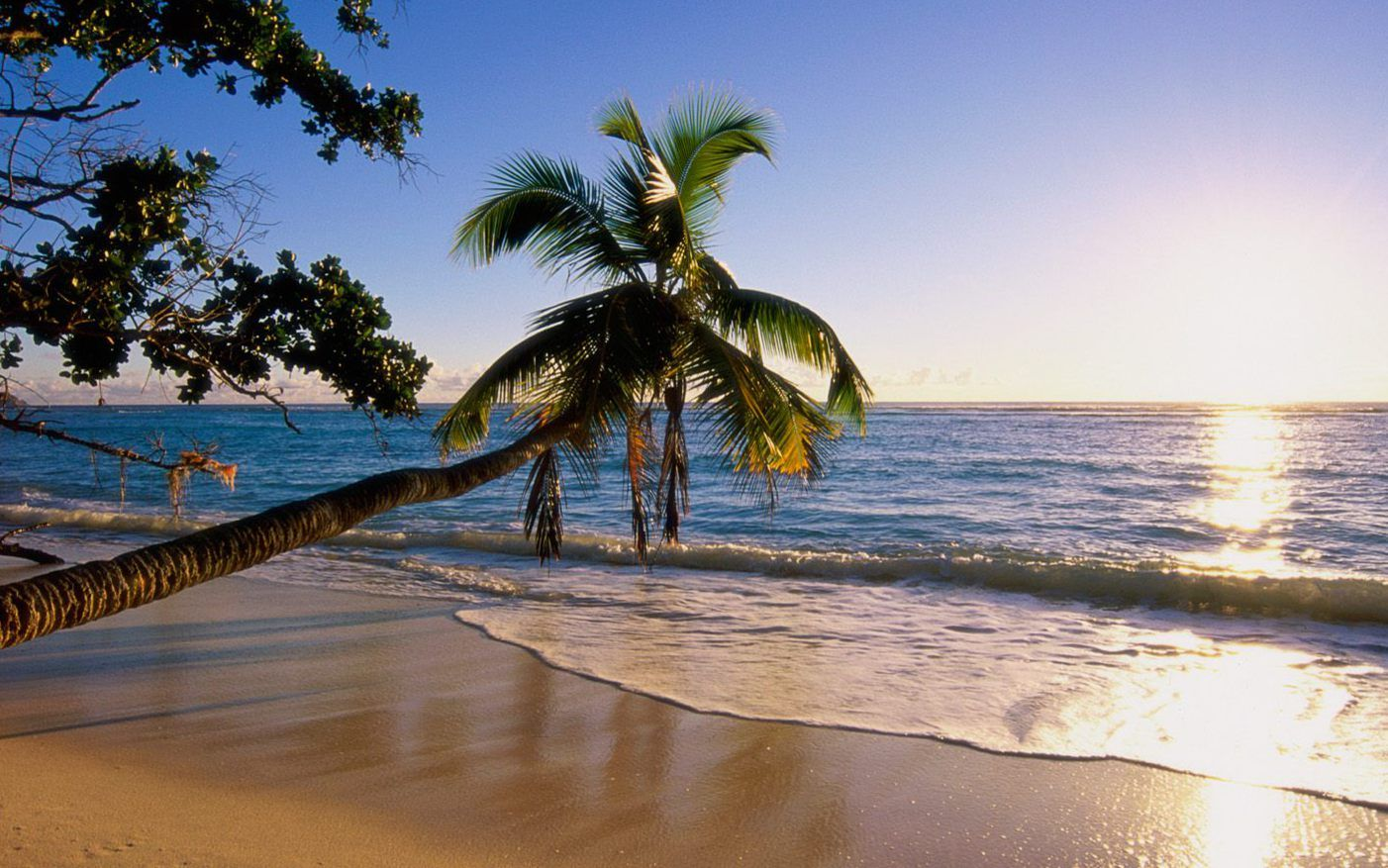 sunsets tropical beaches | Tropical Island, beaches, island, sunset, tropical