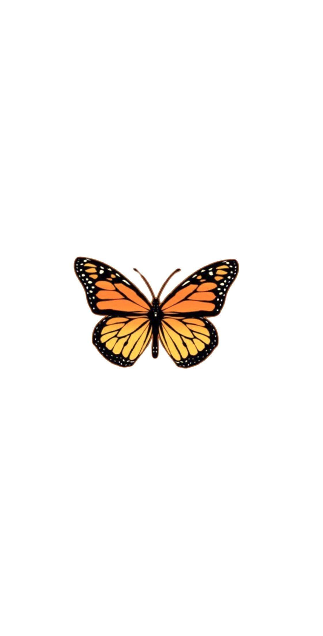 #butterfly aesthetic wallpaper Butterfly wallpaper, # ...