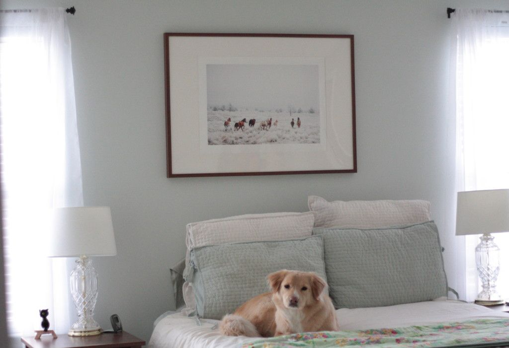 Master Bedroom Benjamin Moore 39 S Healing Aloe Paint Color From My Blog Pinterest Master