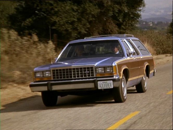 Mother's 1983 blue Country Squire.  Good car!!!