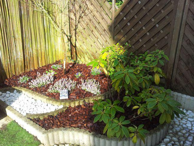 Bordure de jardin avec copeaux de bois et plantes vertes for Entretien plantes jardin