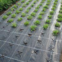 из чего сделан укрывной материал для огорода