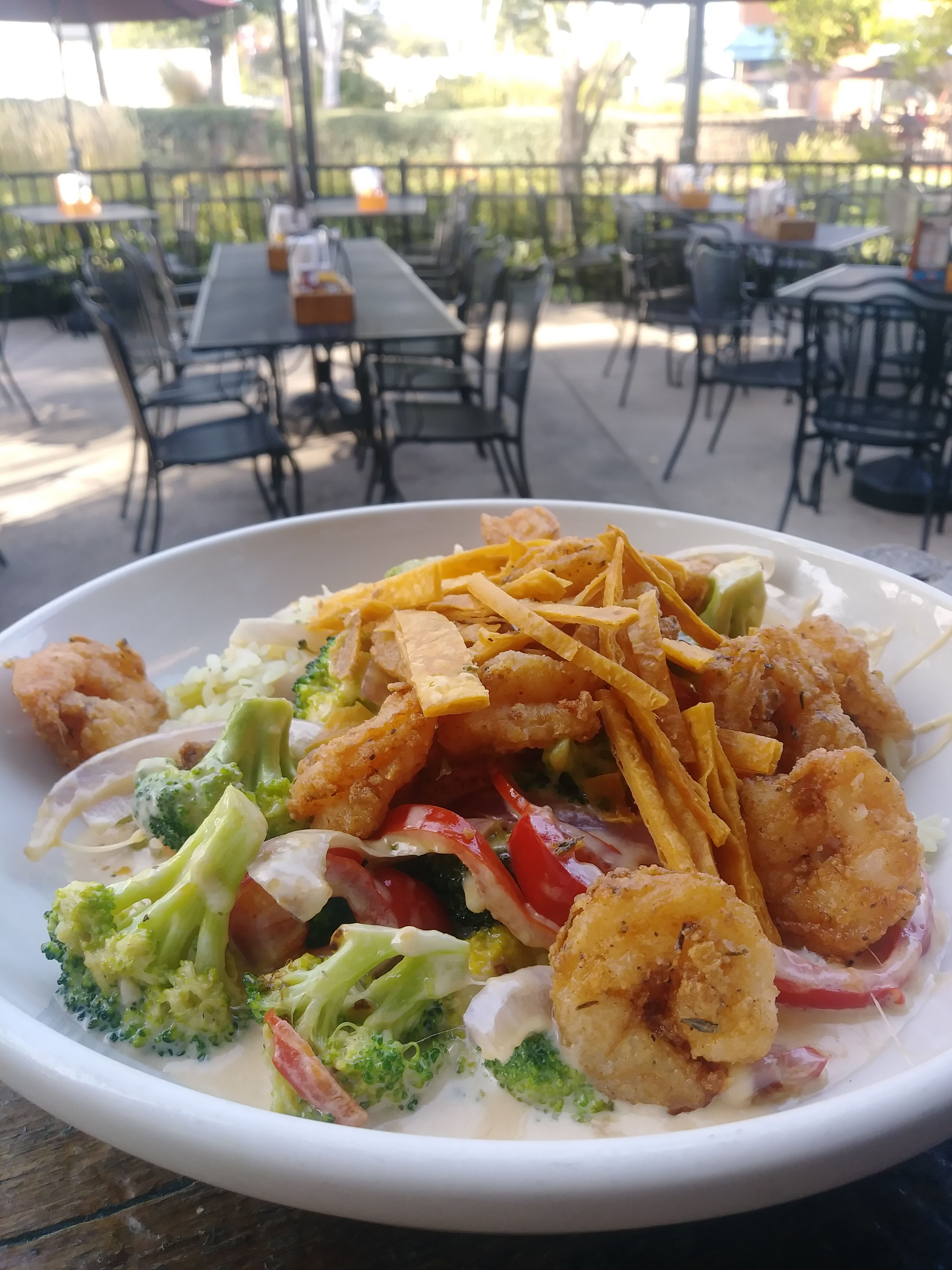 Tonight S Dinner Special Is A Cheddar Crusted Shrimp And Rice Bowl
