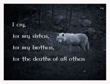 I cry, for my sisters, for my brothers, for the deaths of all others.