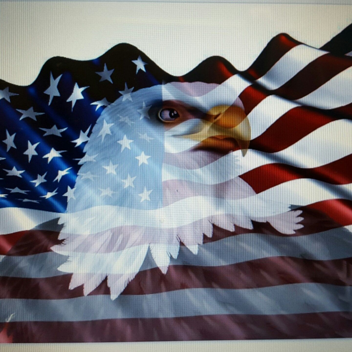 24x40 American Flag Eagle 1 Window Rv Trailer Decal