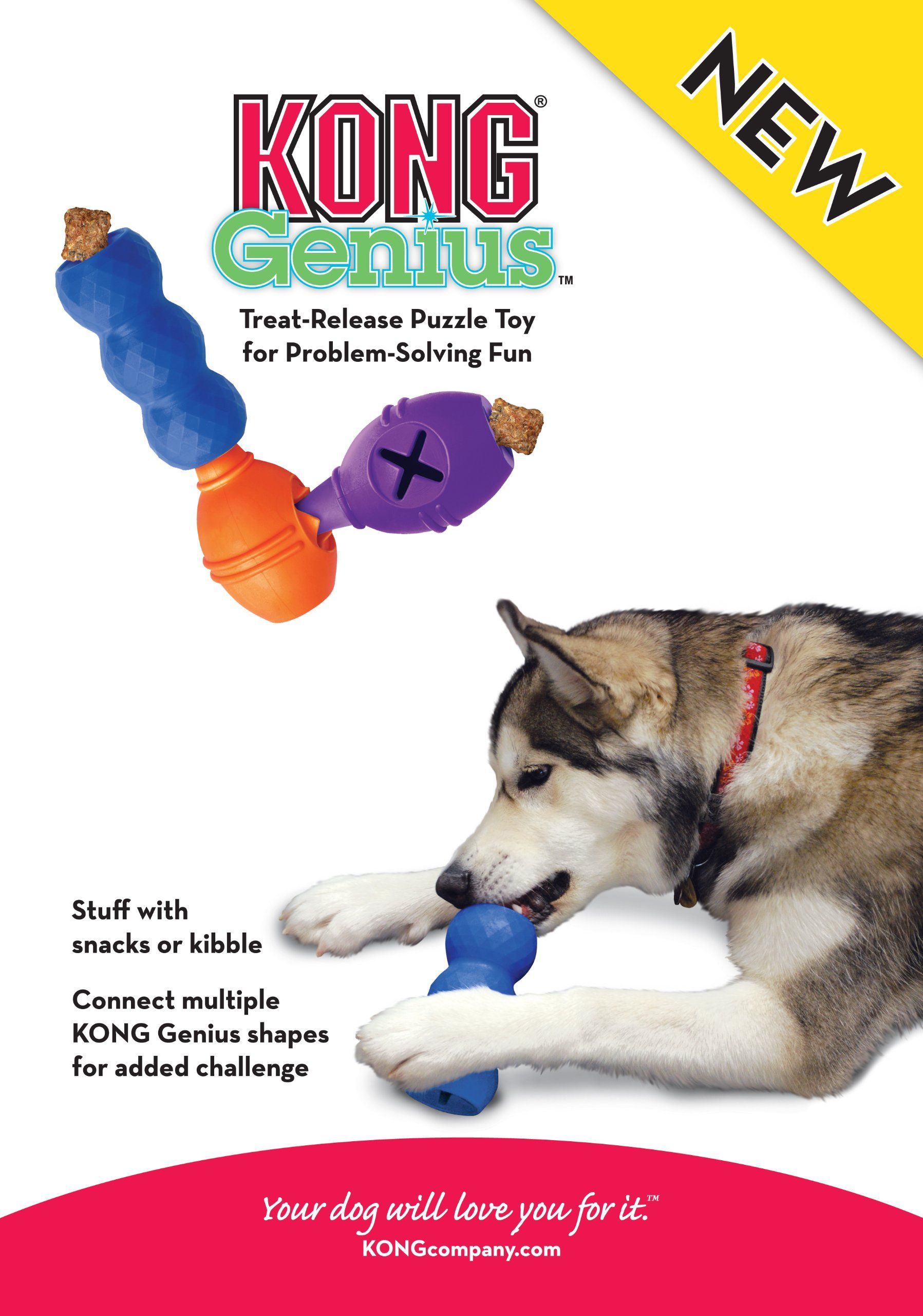 Kong Genius Leo Dog Toy Large Colors Vary Check Out This Great