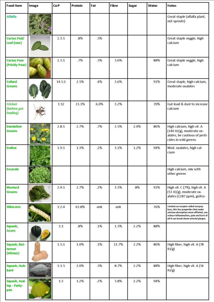 Food Chart With Pictures Bearded Dragon Forum