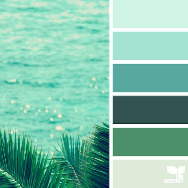 Color Palettes Ocean Green And Blue By Design Seeds Seedcolor