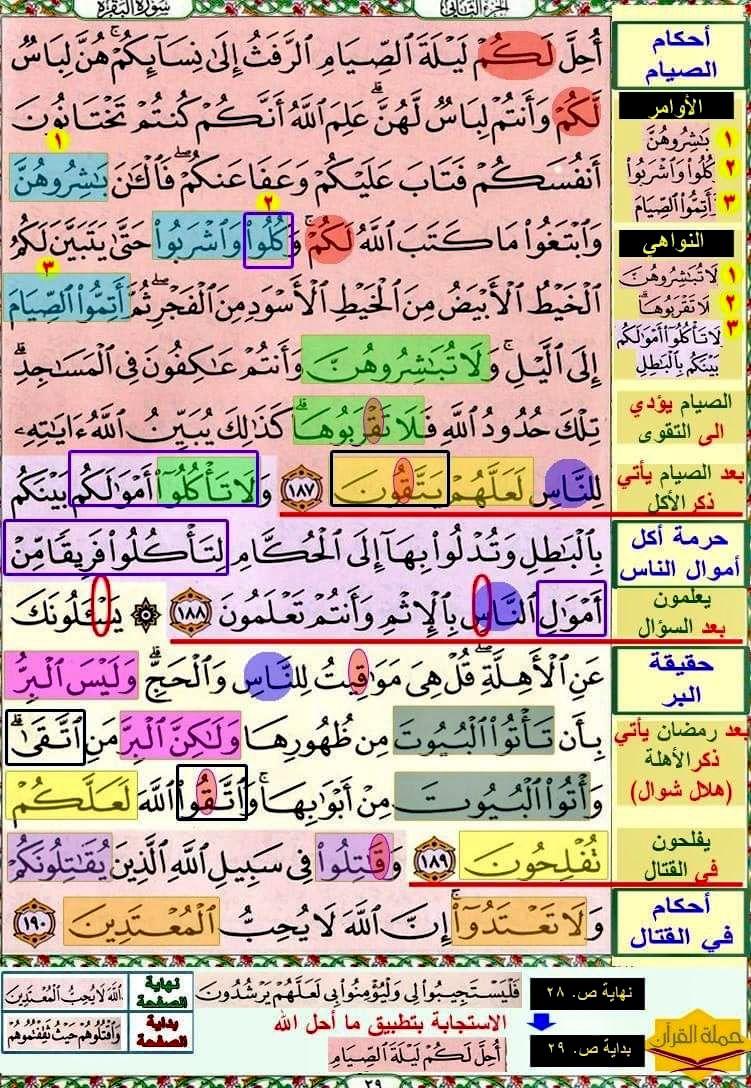 تثبيت حفظ سورة البقرة صفحة ٢٩ In 2021 Quran Verses Verses Quran