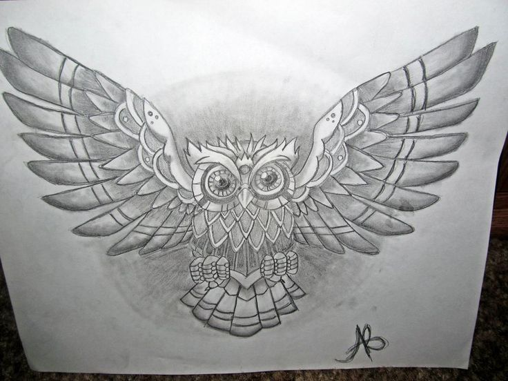 Geometric Open Wings Owl Tattoo On Chest: Real Photo ...