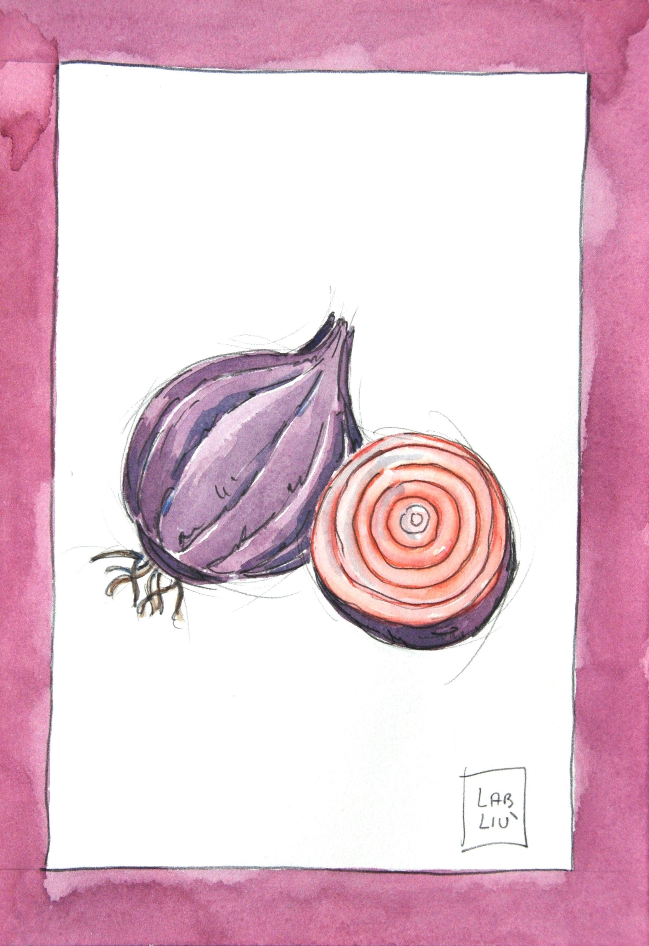 Poster cucina, ricette illustrate, disegno verdure, cipolla ...