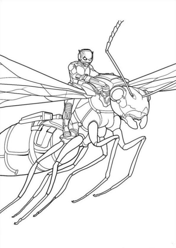 Coloring Page Ant Man Ant Man Avengers Coloring Pages Avengers