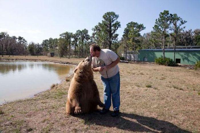 D'awwwhhhh, I love bears