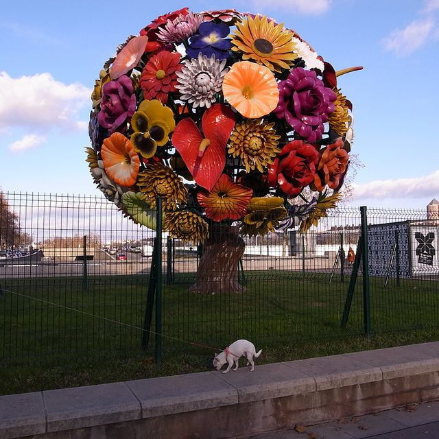 """""""Flower Tree"""" by Jeong Hwa Choi, Lyon, France by Marie Noelle Taine"""