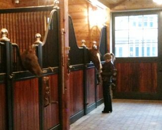 Love these european-styled Lucas Equine horse stalls. The big brass finials are gorgeous!