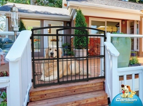 Indoor Outdoor Expandable Pet Gate, Outdoor Pet Gate For Porch