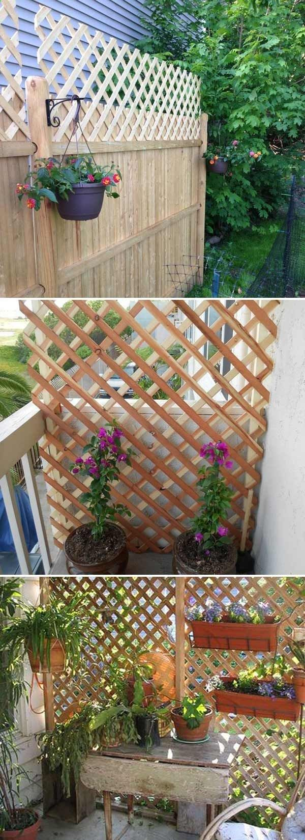 Get added privacy in your yard by building a trellis or ...