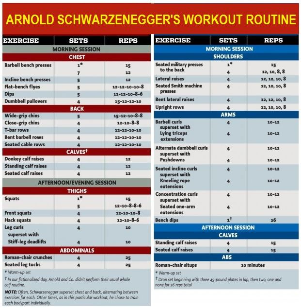 Arnold Schwarzenegger S Workout Routine Body Arnold Schwarzenegger S  Blueprint To Cut Bodybuilding Com