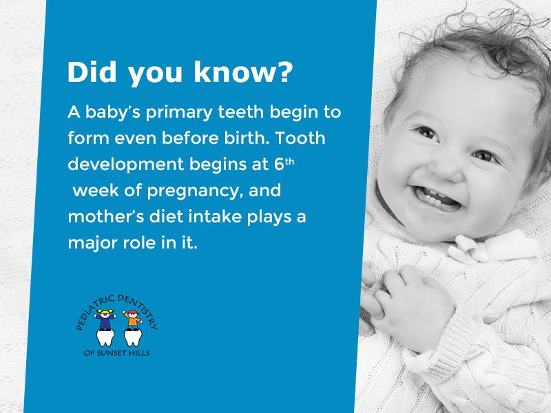 Did You Know A Baby S Primary Teeth Begin To Form Even Before Birth Tooth Development Begins At 6 Pediatric Dentist Dental Kids Baby Development Activities
