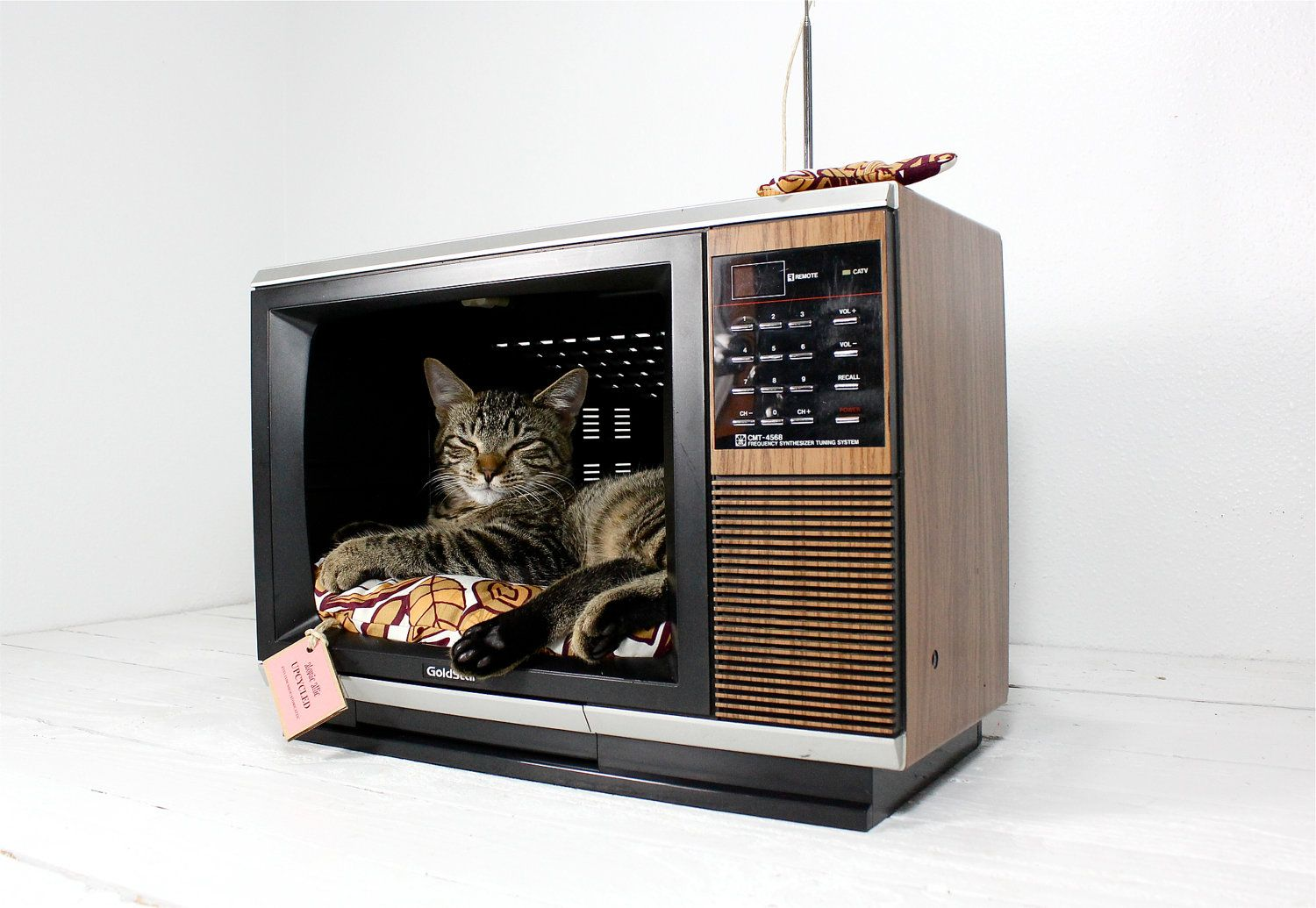 http://remobilia.com/wp-content/uploads/2013/02/Upcycled-Television-Pet-Bed.jpg