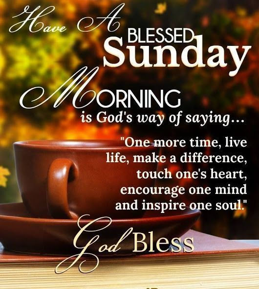 """Good morning! 🌞 Have a blessed Sunday! ️ """"Live life, touch"""
