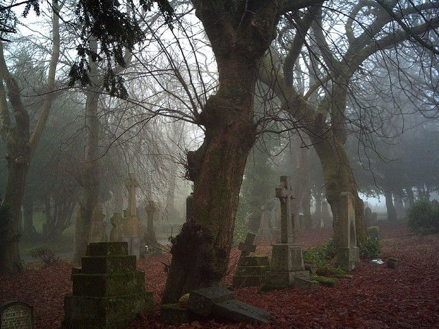 Greenock Cemetery | by Strength