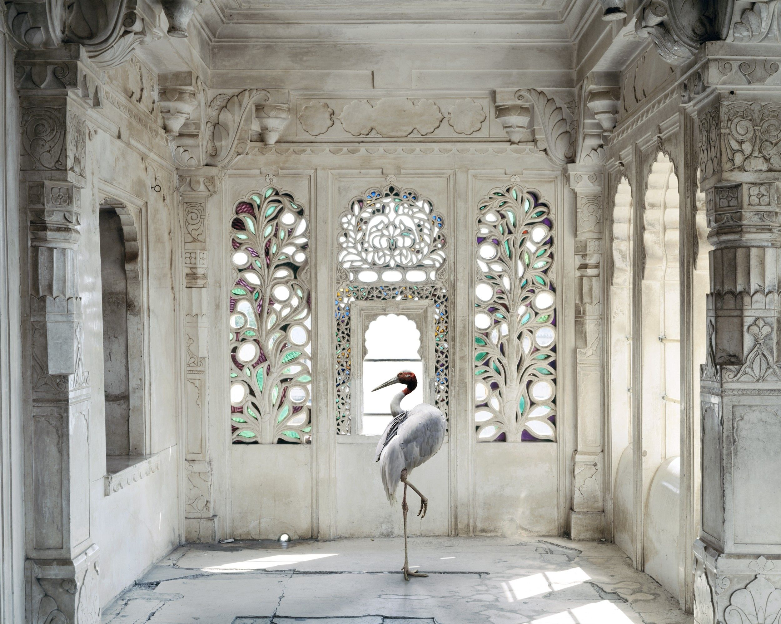 Karen Knorr, India Song