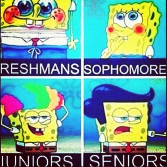 One More Year And I Ll Be A Freshmen Spongebob Memes Funny Cartoons Jokes Funny Pictures