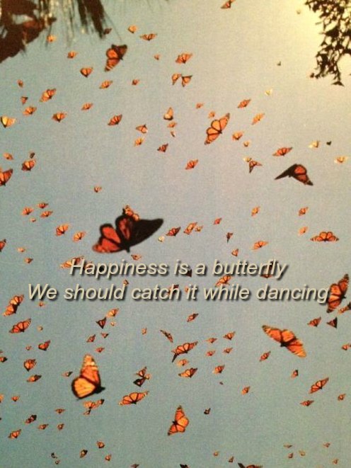 Happiness is a butterfly - Lana Del Rey