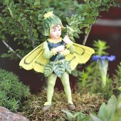 Box Tree Fairy....got to have fairies for the Fairy Garden! This one reminds me of my grandson Austin! :)