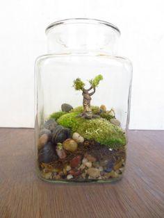 African American Miniature Terrarium Decorations Google Search