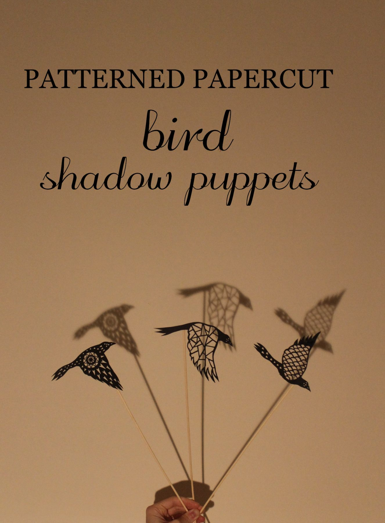 bird_shadow_puppets_title 01_2016