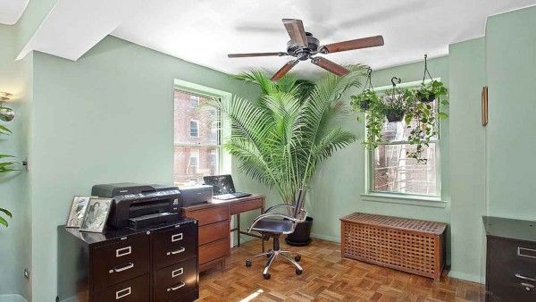 Home Office Must Haves Home Decoration Ideas