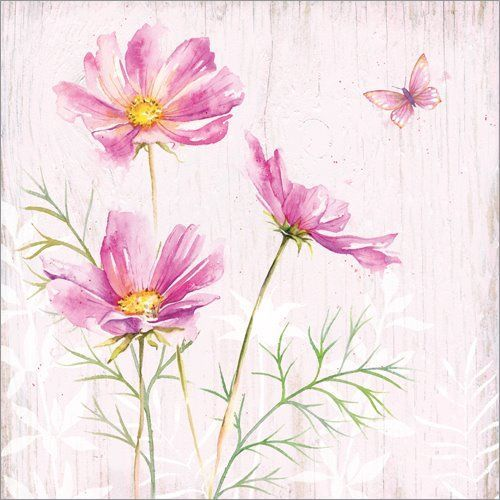 Cosmea With Images Watercolor Flowers Cosmos Flowers Flower