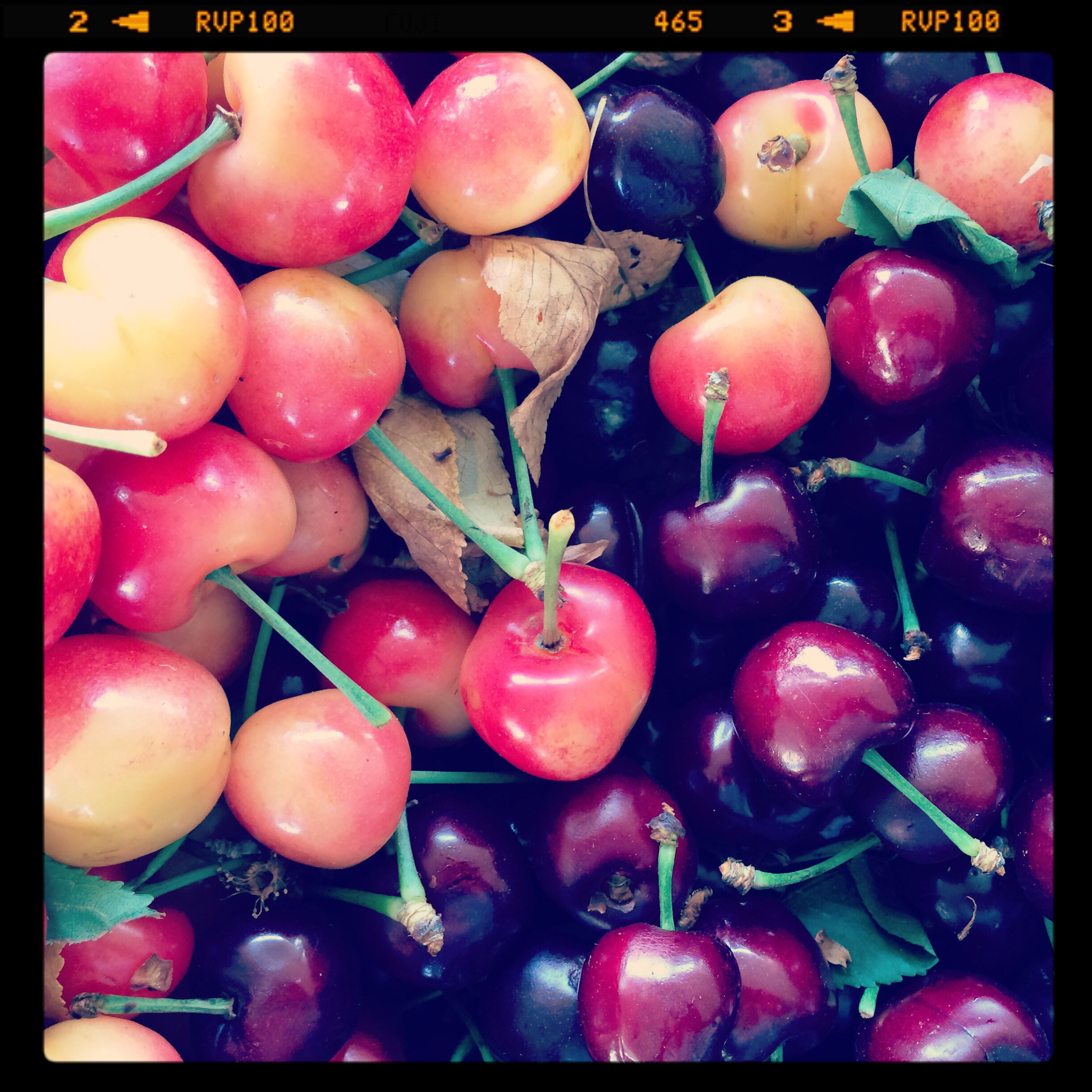 Beautiful rainier and big cherries! #kaisersouthsanfranciscofarmersmarket #localfood #slowfood #bayareaslowfood