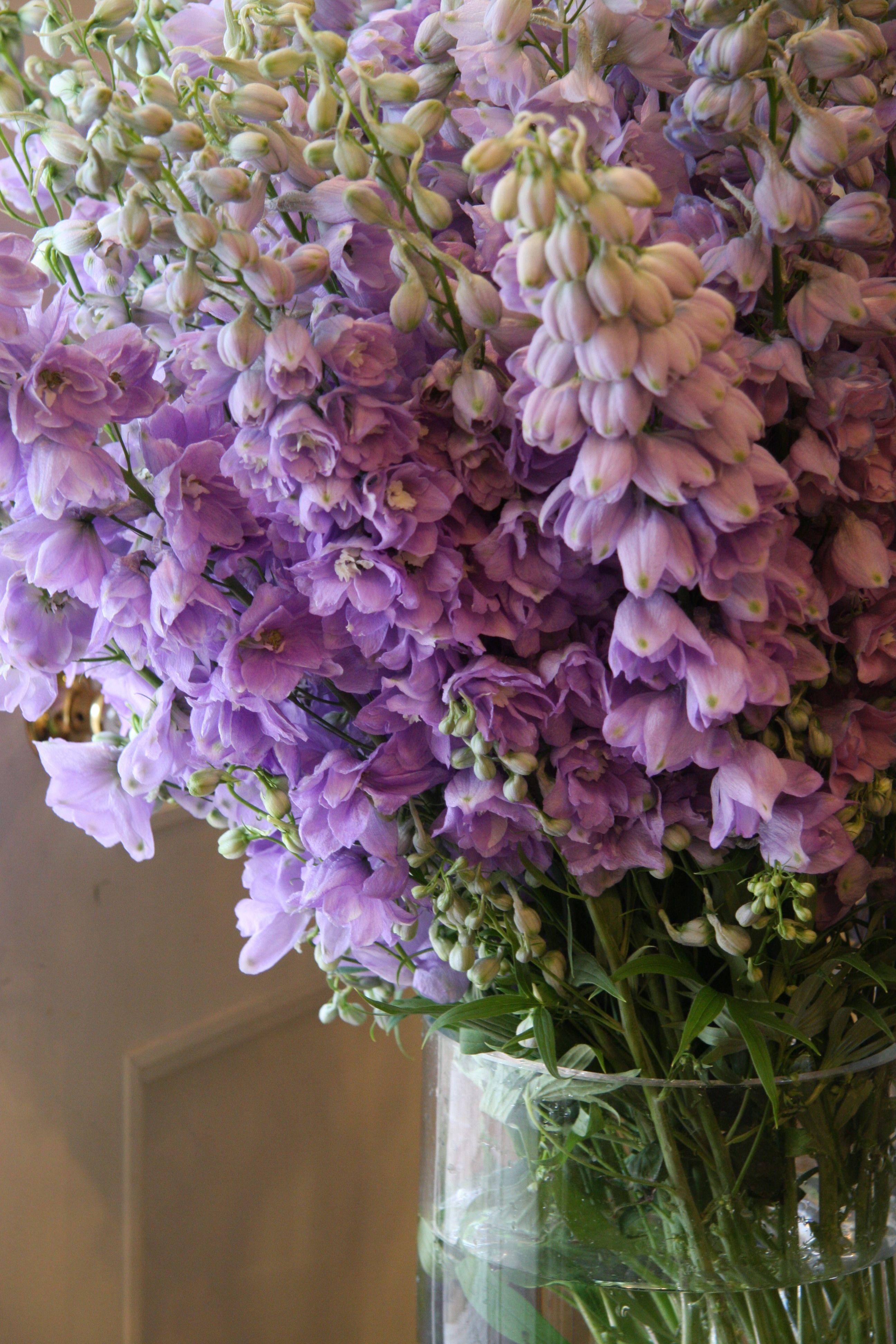 Delphinium lilac candle lavander wedding pinterest for Flower arrangements with delphinium