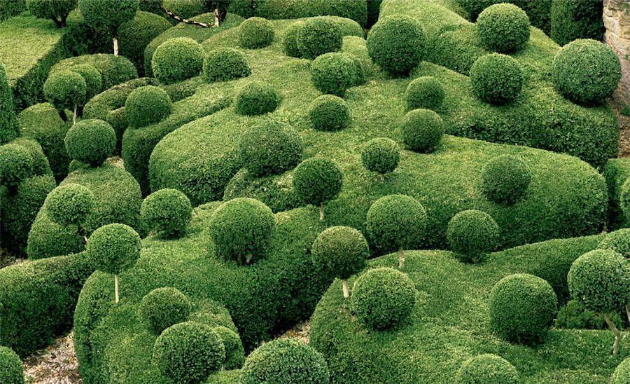 Strange and Surreal Topiary Gardens in France – Fubiz Media