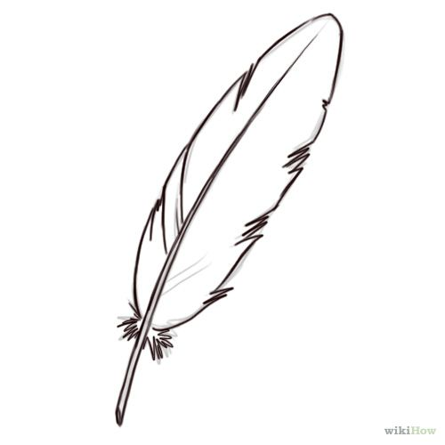 Line Drawing Feather : Draw a feather feathers drawings and doodles
