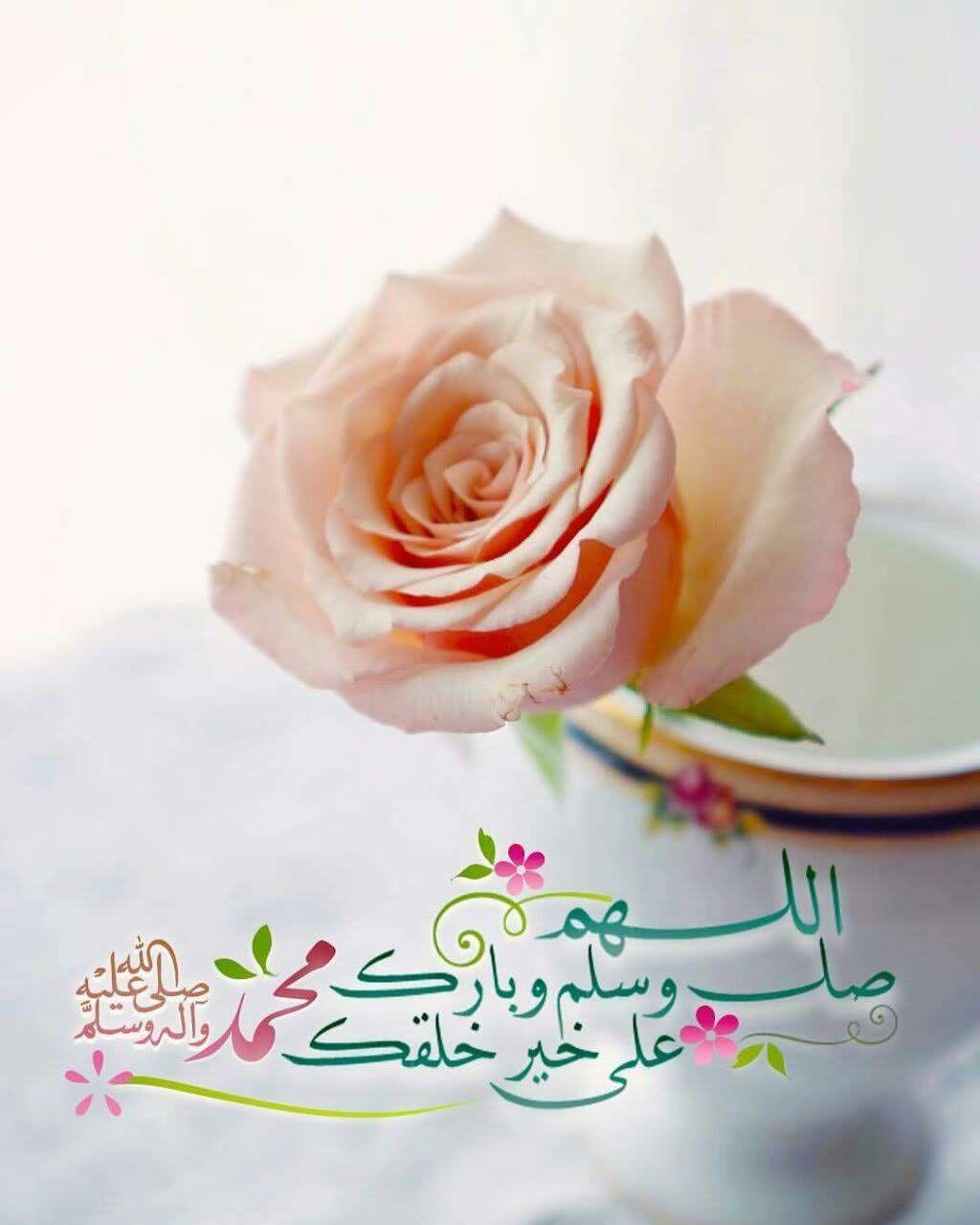 Pin Oleh Shima Megawry Di Beautiful Flowers And Roses