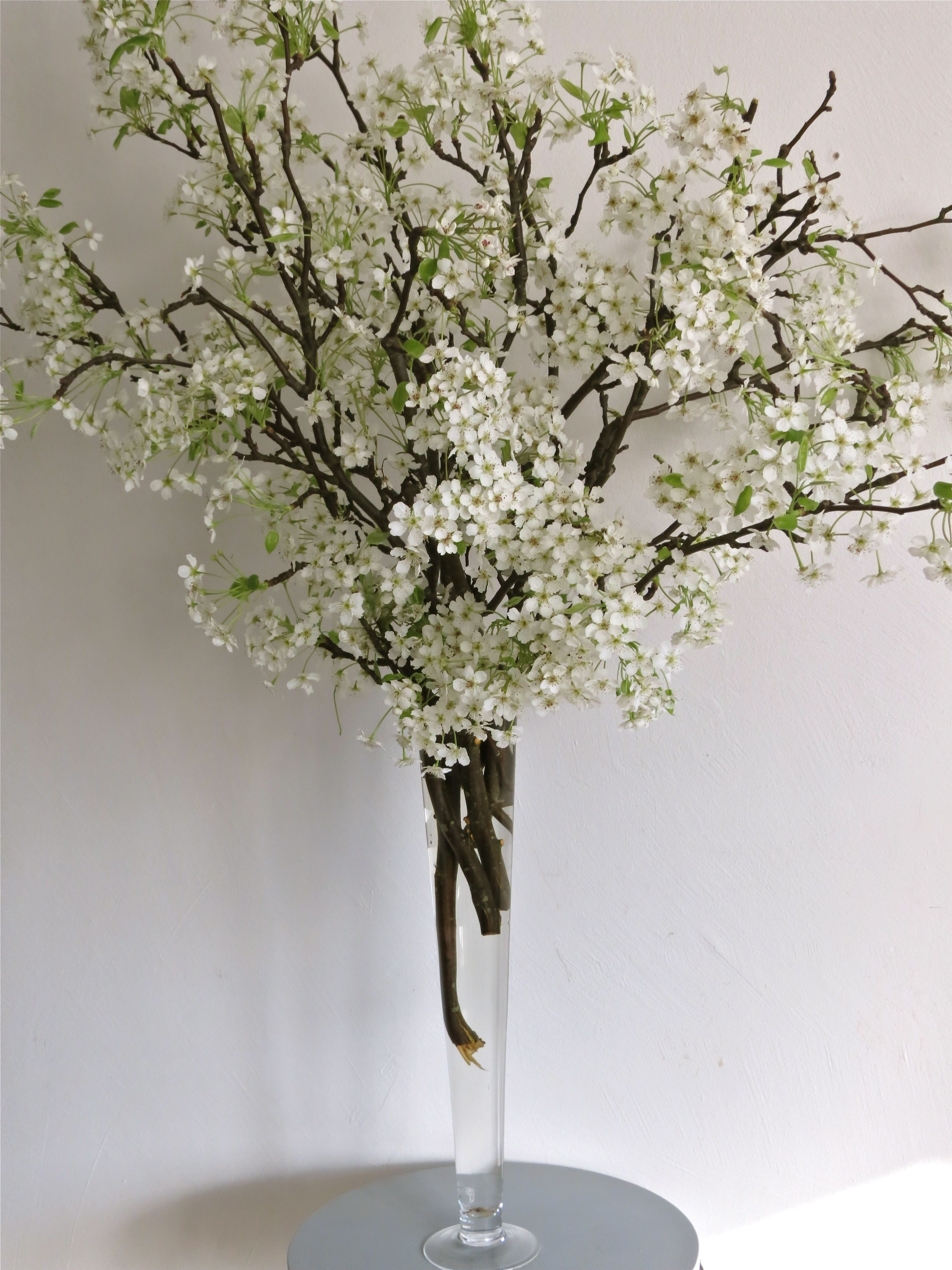 Pear branches centerpieces pinterest pear branch for Floral arrangements with branches