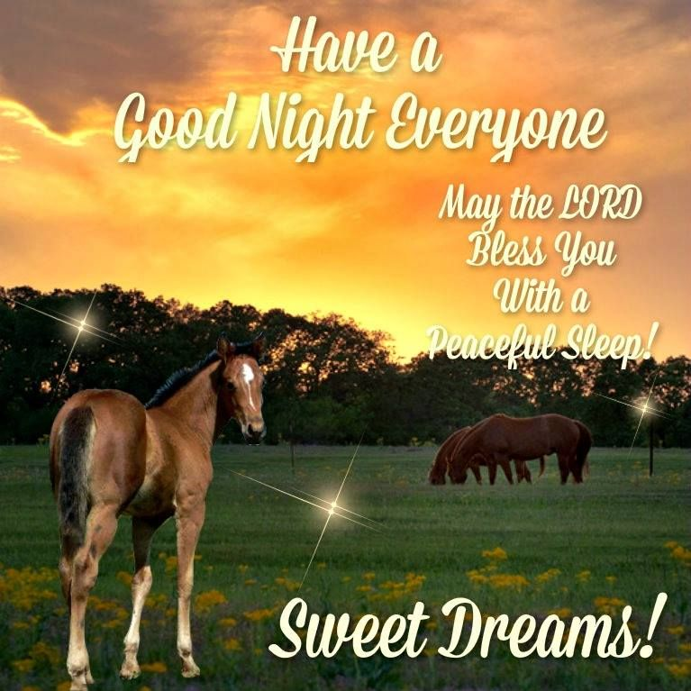 Good night friends! Have a peaceful and blessed evening