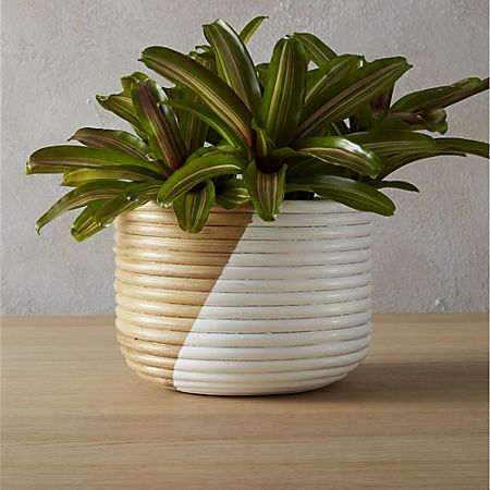 Basket Extra Large White Planter White Planters Basket 400 x 300