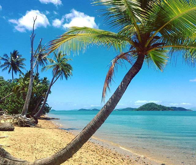 """Dunk Island Australia: Did You Know You Can Camp On Dunk Island? A True """"Peace"""