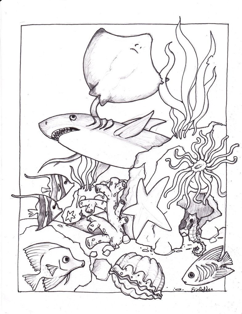 Underwater Coloring Page : underwater, coloring, Printable, Ocean, Coloring, Pages, Animal, Pages,, Dolphin, Detailed