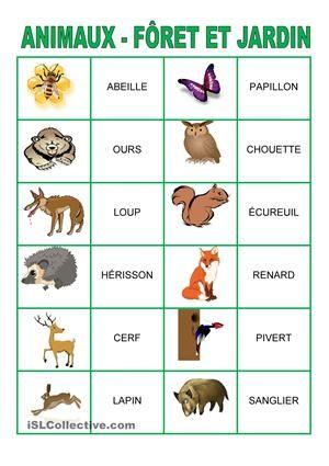 Jeu de m moire animaux de la for t et du jardin animaux animaux animaux foret et jeux de - Les animaux du jardin ...