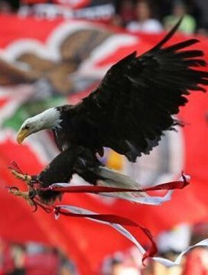 Vitória – a mascote do Benfica