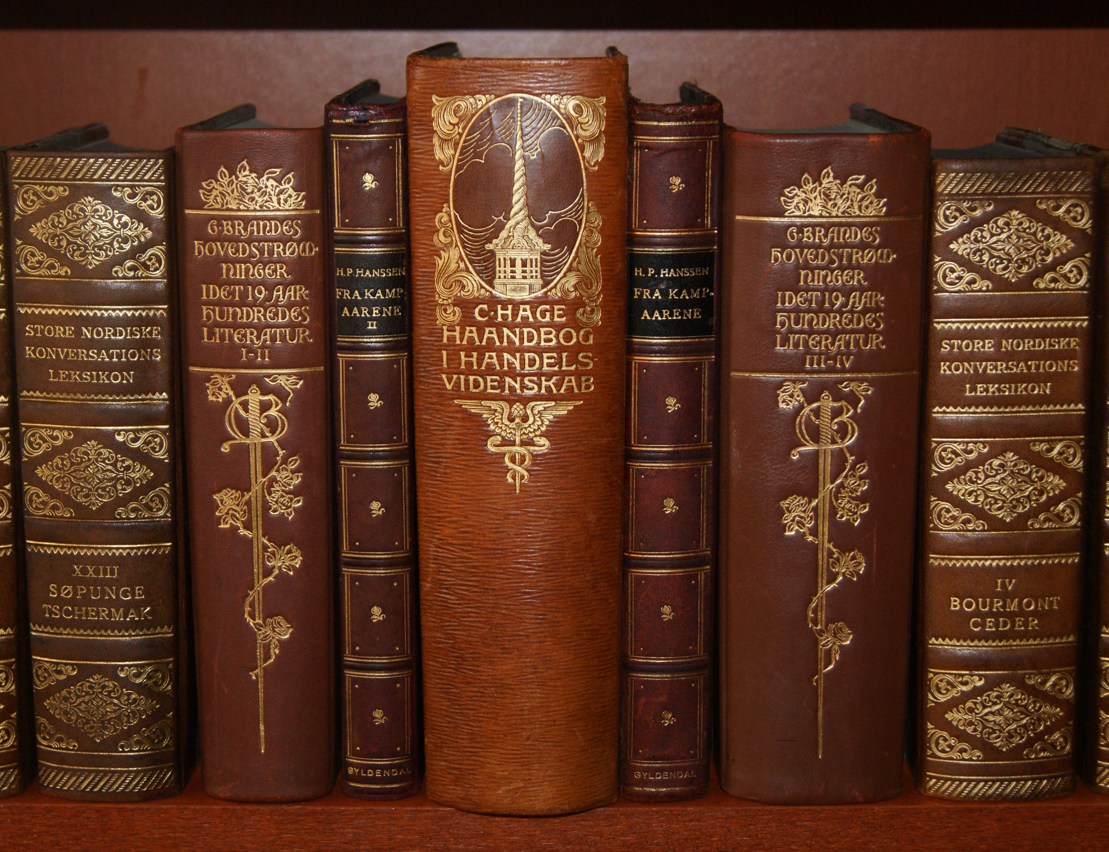 Richly Gilded Leather Spines On Old Books From Early 1900 Antique Books Book Spine Leather Bound Books