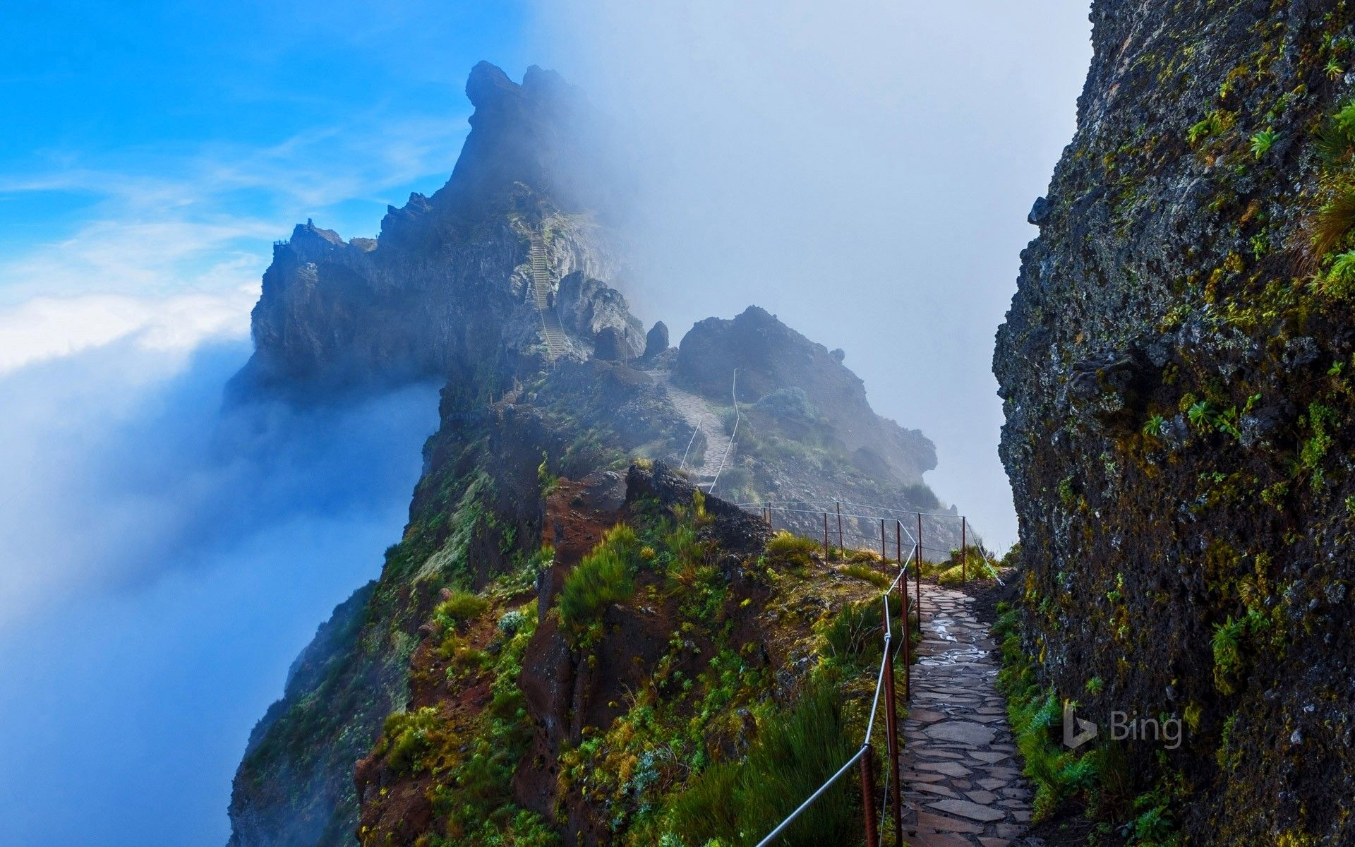 mountain trail in madeira portugal rusinka 02 pinterest mountain trails mountains and. Black Bedroom Furniture Sets. Home Design Ideas